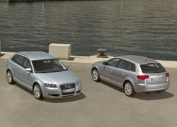 Problems and Recalls: Audi 8PA A3 Sportback (2005-12) | DSG